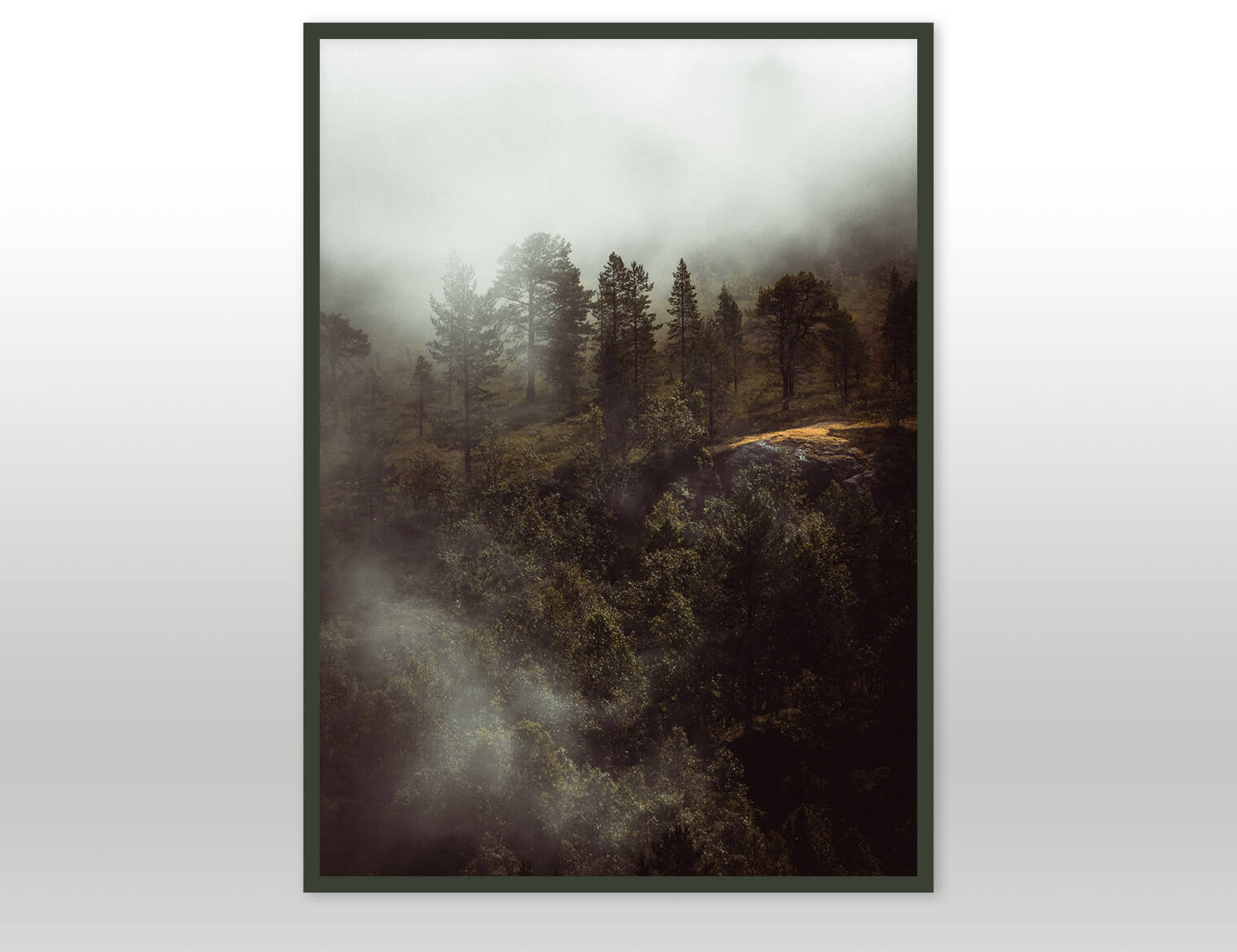 Fine Art Prints by Visual Artist and Photographer Jan Erik Waider