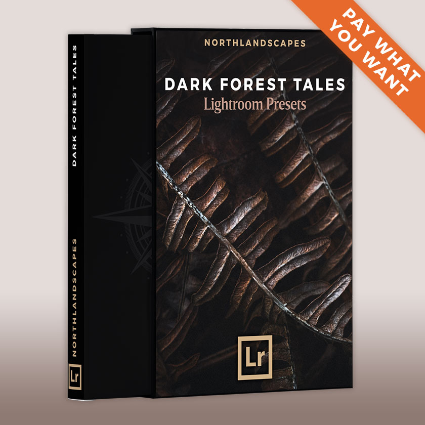 FREE Dark and Moody Forest Lightroom Presets