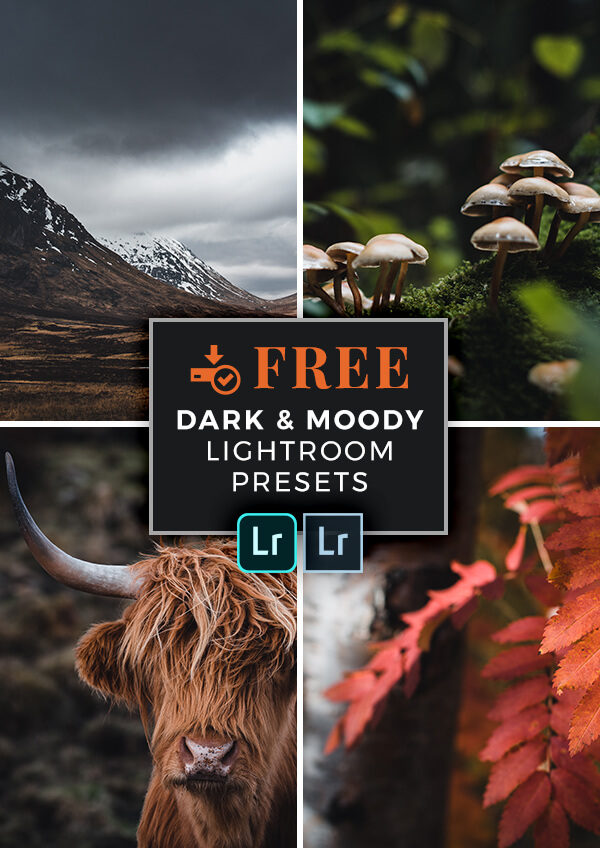 Download FREE Dark & Moody Lightroom Presets for Landscape Photography