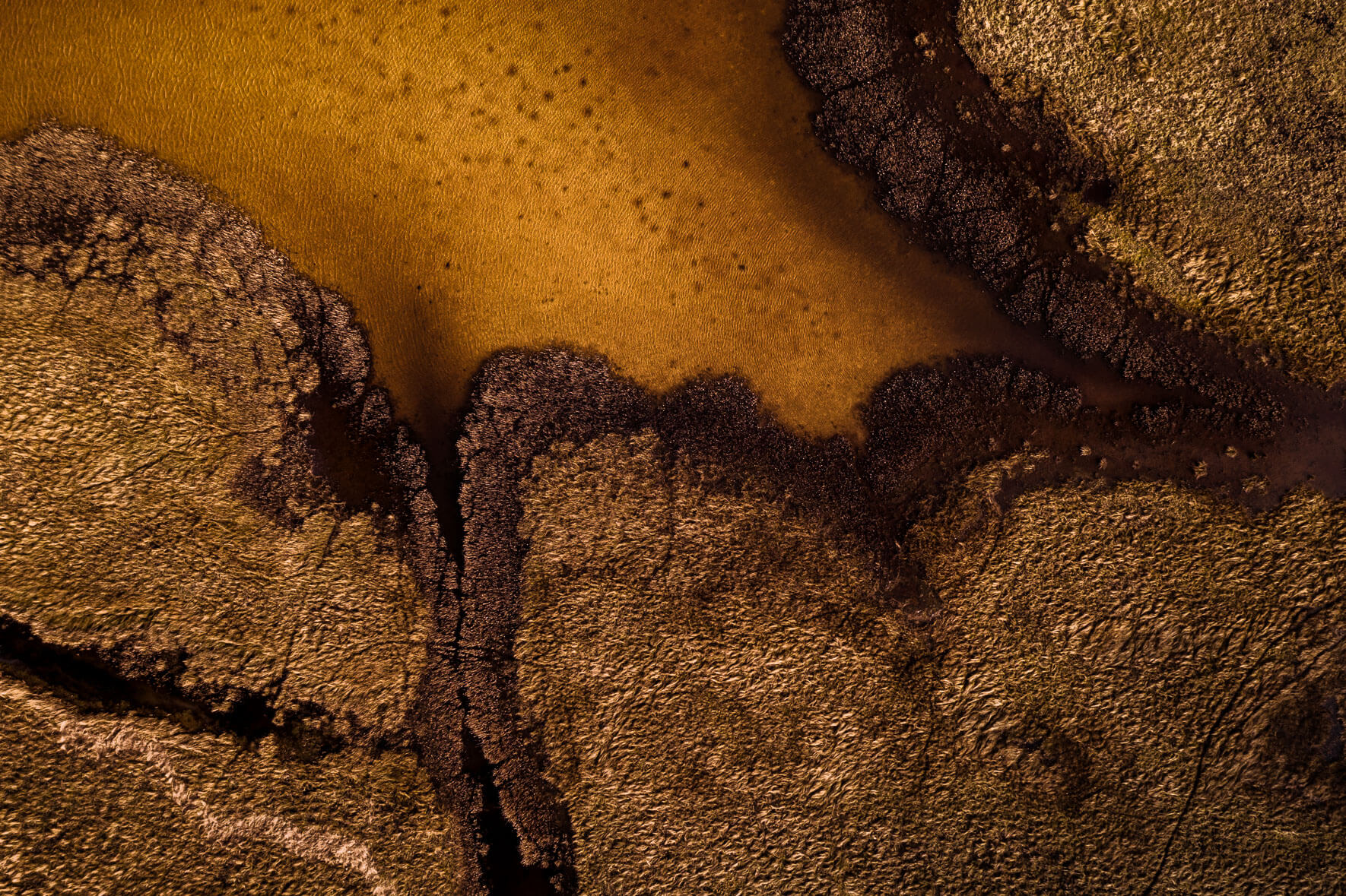Abstract yellow lake and grass from aerial perspective