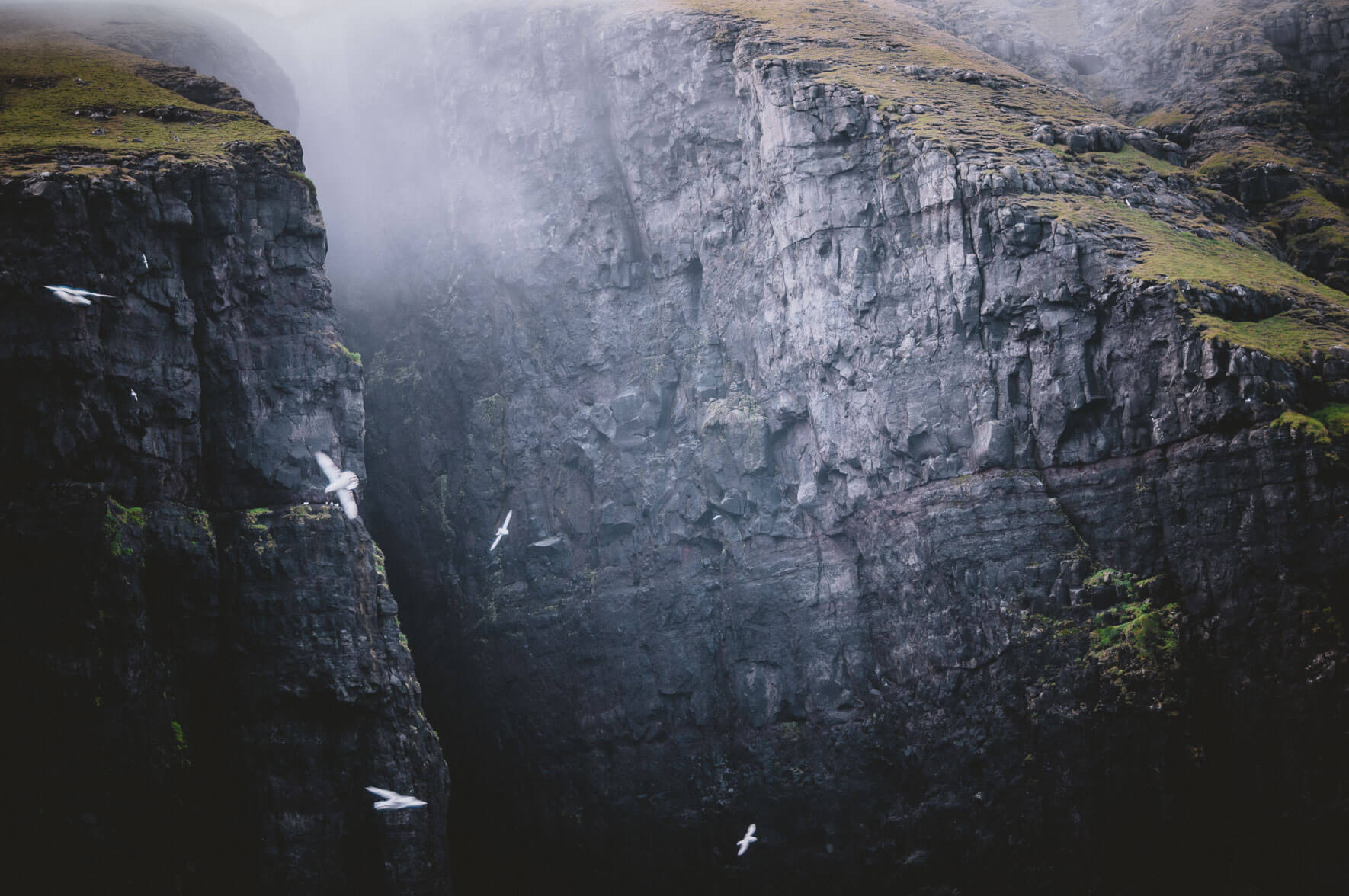 Bird cliffs of Suðuroy on the Faroe Islands