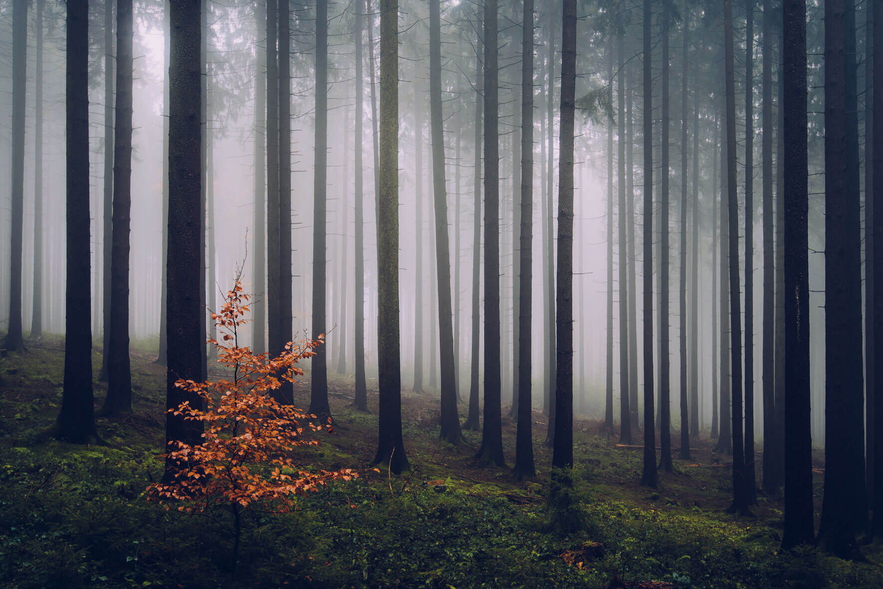 Nordic landscape photography by visual artist and photographer Jan Erik Waider