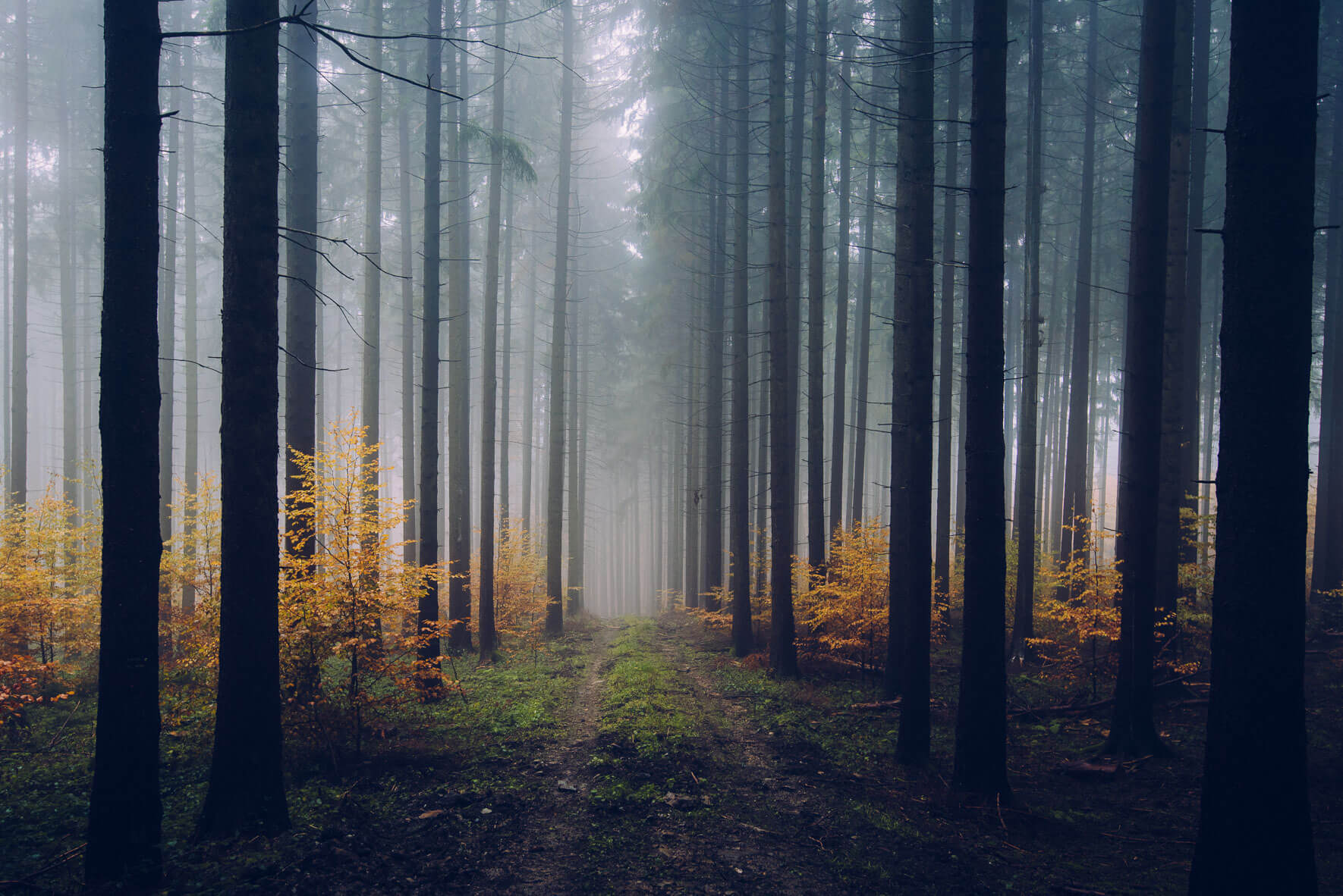 Northlandscapes – Atmospheric landscape photography of the North by Jan Erik Waider